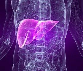 Характер гепатита при инфекционном мононуклеозе у больных разного возраста с типичными и стертыми проявлениями болезни