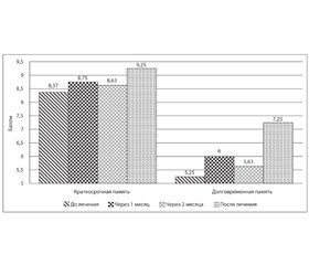 Effect of the drug Bilobil Intens 120mg on the functional state of the central nervous system in elderly patients, who suffered an ischemic stroke