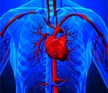 П'ять причин, чому сакубітрил/валсартан не повинен бути схваленим для лікування хронічної серцевої недостатності зі збереженою фракцією викиду лівого шлуночка