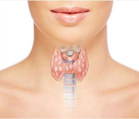 Influence of hypothyroidism in men on androgenic function