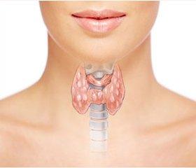 Вплив гіпотиреозу в чоловіків на андрогенну функцію