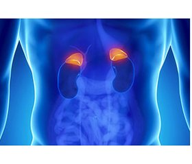 The particularities of management of patients with malignant tumors of adrenal medulla
