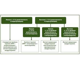 Маастрихтский консенсус-5: аналитический обзор положений