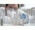 Влияние 60-дневного введения бензоата натрия на прочностные характеристики костей скелета белых крыс в период реадаптации