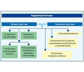 Место Ритмокора в комплексной антиаритмической терапии у пациентов с патологией щитовидной железы