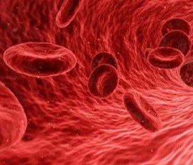 2019 — рік боротьби з тромбоцитопенією