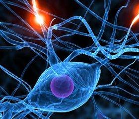 Ступені дисциркуляторної енцефалопатії і їх симптоми (частина 2)