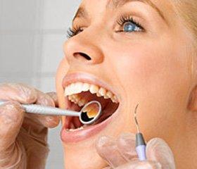 Влияние на обмен костной ткани верхней челюсти полиэлементов медно-цинковой колчеданной руды прихроническом воздействии