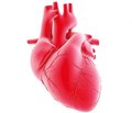 Современный выбор и оптимальное применение органических нитратов в терапии стабильной ишемической болезни сердца