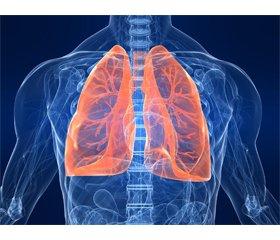 Хроническое обструктивное заболевание легких: роль обострений в прогрессировании заболевания и пути преодоления проблемы