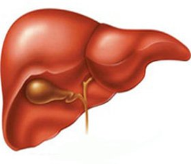 Епідеміологічні й терапевтичні аспекти хронічних дифузних захворювань печінки у військовослужбовців