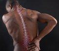Минеральная плотность и метаболизм костной ткани у пациентов соспинальной травмой
