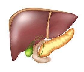 Особенности патогенеза анемии у больных хроническим гепатитом С, получающих комбинированную противовирусную терапию
