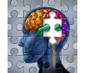 Neuroplasticity and post-stroke cognitive impairment (therapeutic possibilities)
