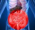 Внутренние болезни: новые аспекты старых проблем (по материалам научно-практической конференции в г. Чернигове)