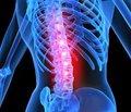 An Update on Osteogenesis Imperfecta