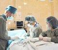 Оптимизация ведения послеоперационного периода при тонзиллэктомии и вскрытии паратонзиллярного абсцесса у детей