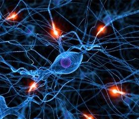 Ассоциация аутоиммунных демиелинизирующих болезней нервной системы с гуморальными иммунодефицитами: новый ключ к пониманию эффективности иммуноглобулинотерапии