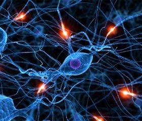 Боль в практике врача-невролога: опыт использования центрального анальгетика Акупан