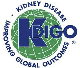 Executive summary of the 2018 KDIGO  Hepatitis C in CKD Guideline:  welcoming advances in evaluation and management