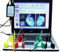 Клиническая трактовка ЭКГ в диагностике острой кардиоваскулярной патологии на догоспитальном этапе