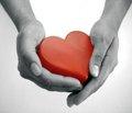 Гендерні особливості зв'язку прозапальних і метаболічних факторів серцево-судинного ризику з гіпертрофією лівого шлуночка у хворих на гіпертонічну хворобу