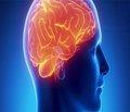 Особенности клинического течения и диагностика больных с семейным анамнезом неактивных аденом гипофиза