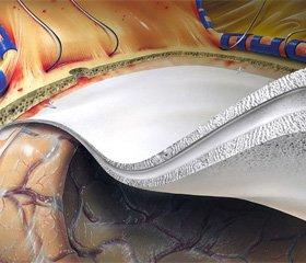 Особенности вегетативного статуса пациентов с инфарктом головного мозга в сравнении с состояниями-предикторами