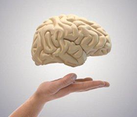 Исследование эффективности нейропротекторов  при острой церебральной недостаточности  с применением метода нейросетевого моделирования