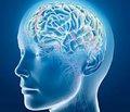 Клинико-неврологическая семиотика травматических   хронических субдуральных гематом головного мозга