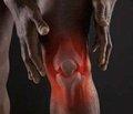 Актуальные вопросы заболеваний костно-мышечной системы  По материалам VI Международной школы-семинара   «Заболевания костно-мышечной системы и возраст»,  г. Яремче, 25 февраля — 1 марта 2013 г.