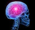 Принципы коррекции холинергической недостаточности, развивающейся  в восстановительном периоде лечения травматической болезни головного мозга  и мозгового инсульта