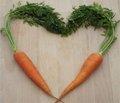 Любовь - морковь и танцы