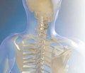 Маркери кісткового метаболізму й остеоасоційовані хімічні елементи в організмі хворих на ревматоїдний артрит