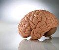 Нейроксон® в терапии острой церебральной недостаточности ишемического генеза