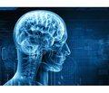 Науково-практична конференція з міжнародною участю «Сучасні підходи до діагностики та лікування захворювань нервової системи»