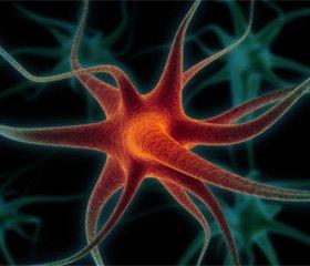 Нейроімунні зміни та їх корекція у хворих у гострому періоді ішемічного інсульту