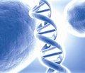 Опыт и перспективы преподавания биоэтики при подготовке педиатров и семейных врачей