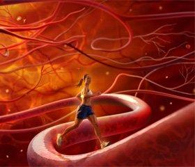 Особливості гемодинаміки при артеріальній оклюзивній хворобі нижніх кінцівок