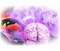 К вопросу о патогенезе эпилепсии