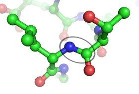 Катионные антимикробные пептиды системы  неспецифической защиты респираторного тракта: дефензины и кателицидины. Дефензины — молекулы, переживающие ренессанс (часть 2)