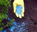 Пестициды сокращают биоразнообразие в ручьях и реках