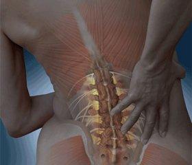 Минеральная плотность костной ткани аксиального скелета у женщин впостменопаузальном периоде с переломом Коллиса