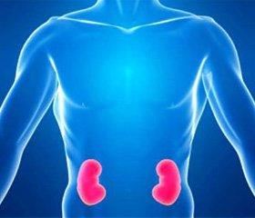 Особливості мінерального обміну та функції паращитоподібних залоз при хронічній хворобі нирок