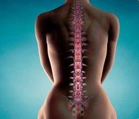 Изучение информированности врачей общей практики о проблеме остеопороза