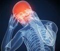 Лікворний тиск і внутрішньочерепний гомеостаз. Сучасні уявлення та власні дослідження