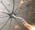 Вікторовські читання (17-19 квітня 2013 р.): «Актуальні питання клінічної нейрофармакології (з секцією для молодих вчених)»