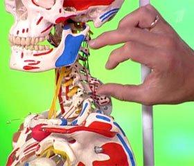 Діагностика і хірургічне лікування післятравматичної тунельної компресії хребцевої артерії