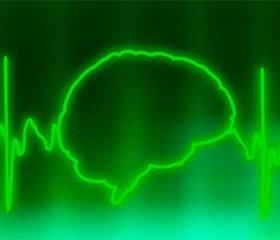 Экспертиза смерти мозга