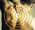 Современное состояние лечения позвоночно-спинномозговой травмы (научный обзор)